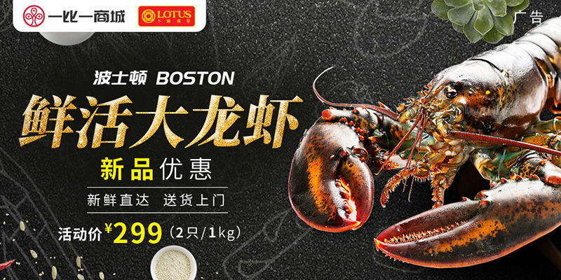 鲜活大龙虾