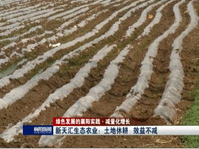 【绿色发展的襄阳实践·减量化增长】新天汇生态农业:土地休耕 效益不减